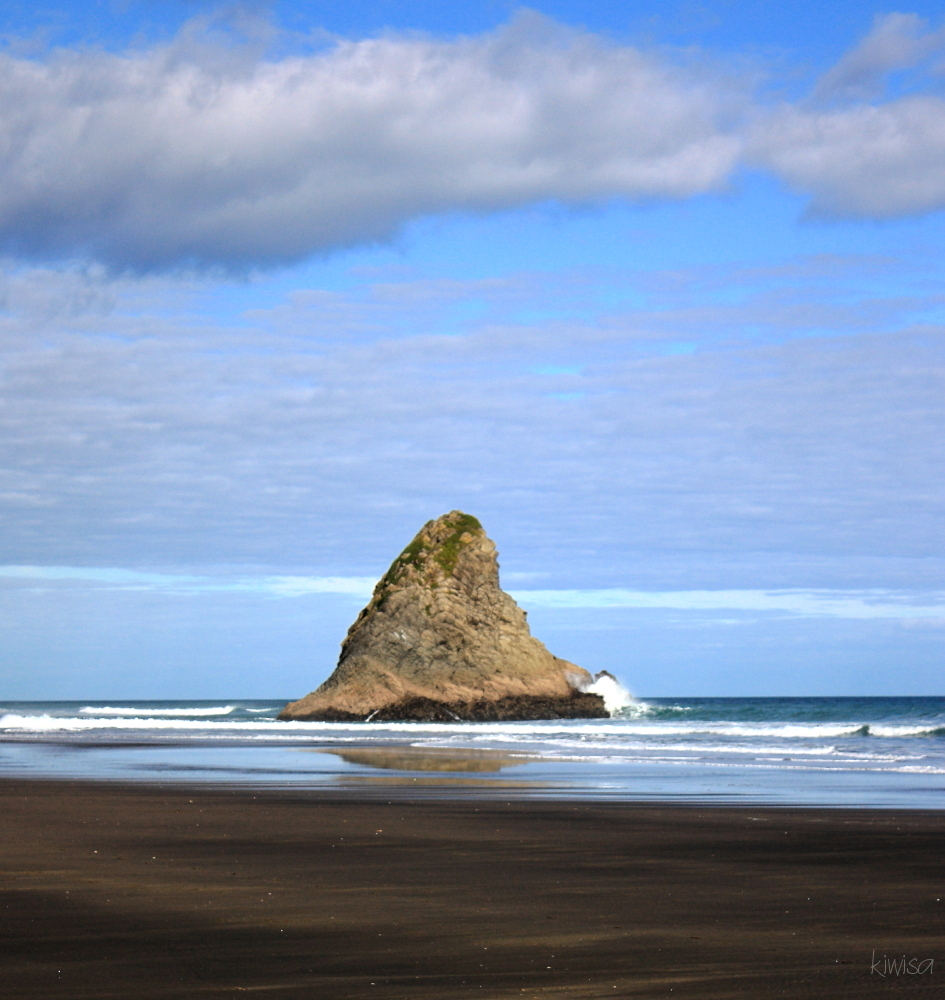 Tor at Karekare Beach
