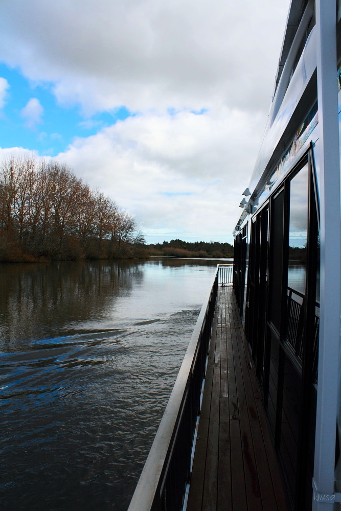 #2 Waikato Riverboat cruise