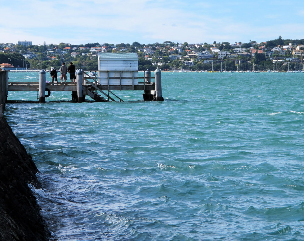 Fishing from the wharf