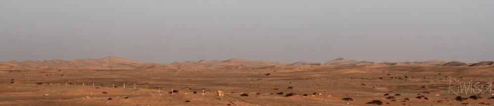 #1 Namib desert