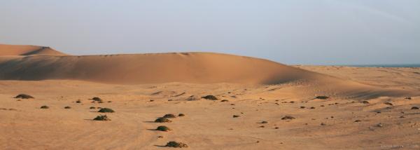 #4 Namib desert
