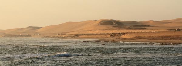 Seaside Desert