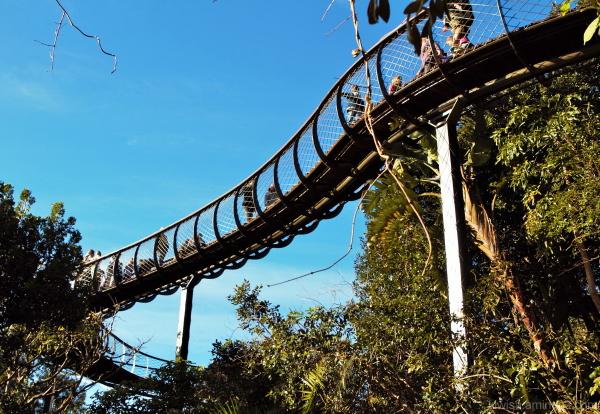 #3 Kirstenbosch