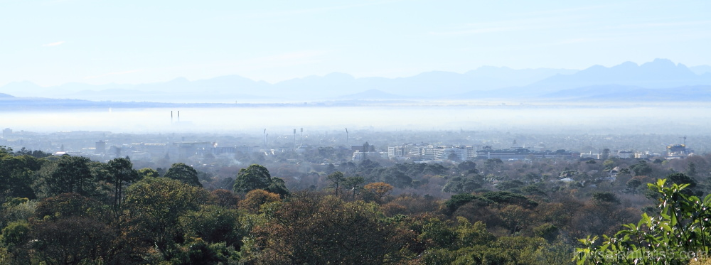 View from the Boomslang