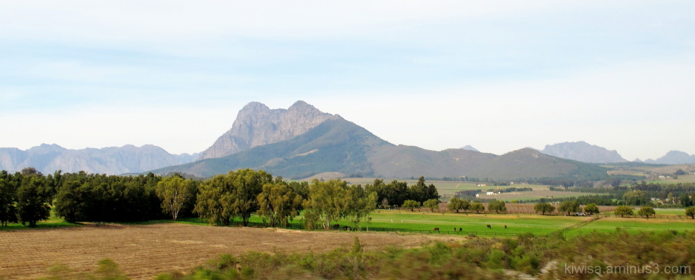 Beautiful mountains of the Cape