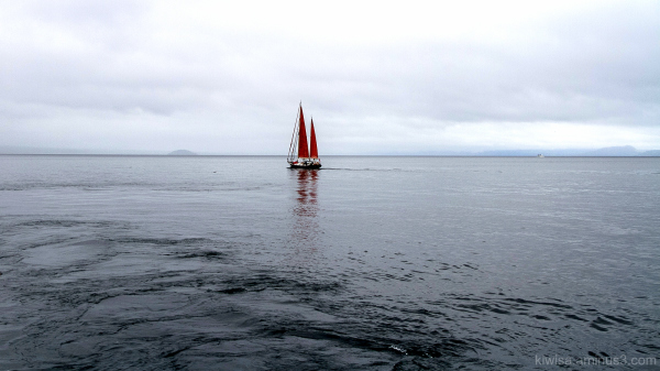 Red Sails on Lake Taupo