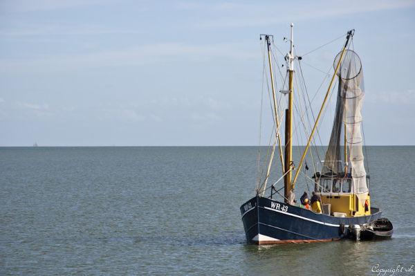 Palingvissers op het IJsselmeer