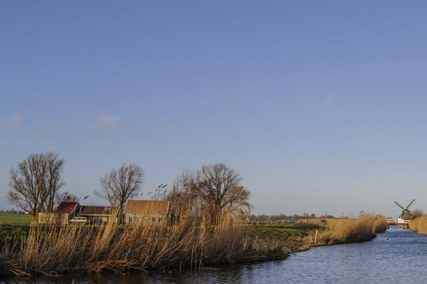 Polder de Berkmeer  (Noord-Holland)