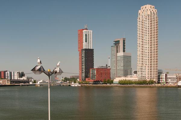 Rijnhaven, Rotterdam