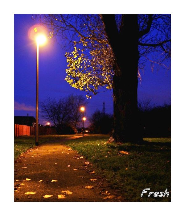 A Twilight walk