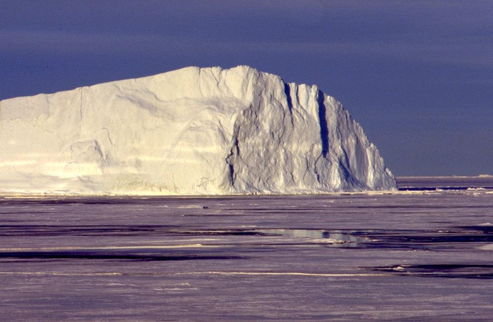 Un iceberg au large de la terre Adélie
