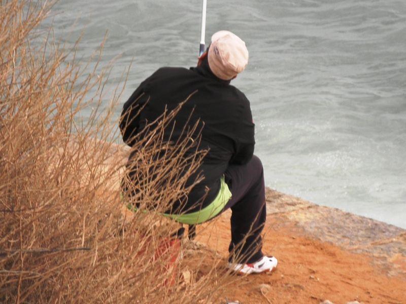 Peixe do alto