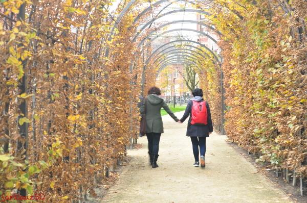 Toward Autumn  1