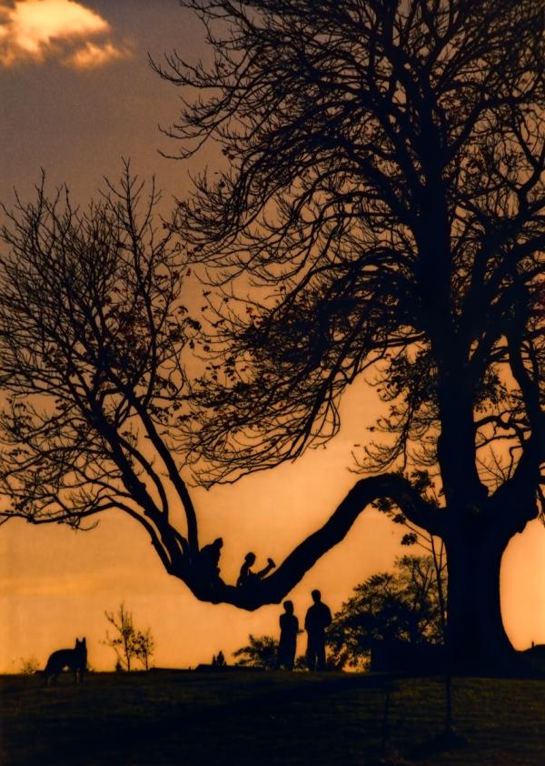 Uneasy Pieces: Family Tree