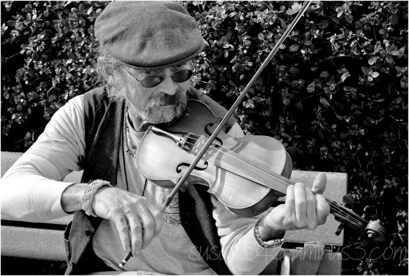 Musician in Black and White
