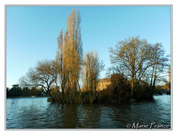 L'ilot avec le moulin à eau de Grez Neuville 49