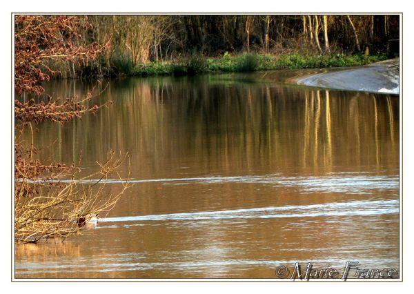 rivière près d'un barrage...