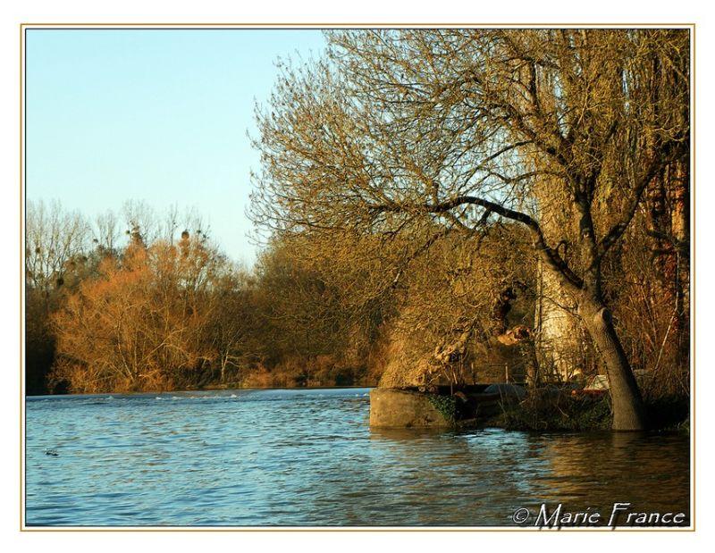 Petit coin de rivière à Noël en Anjou