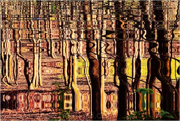 image abstraite
