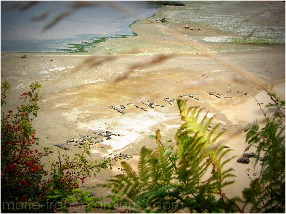 land art sur une plage