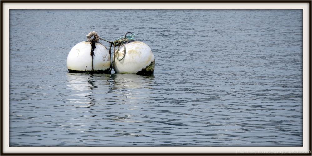 Deux bouées en Bretagne