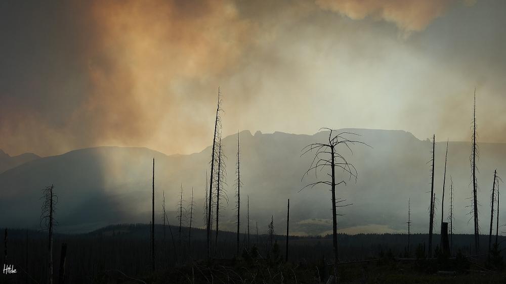 Reynolds Creek fire in Glacier Natl. Park