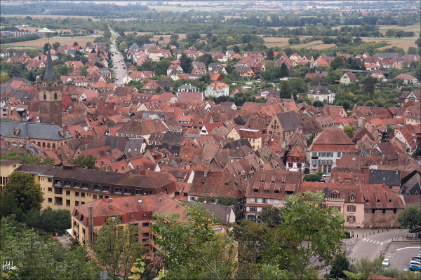 roofs of Obernai