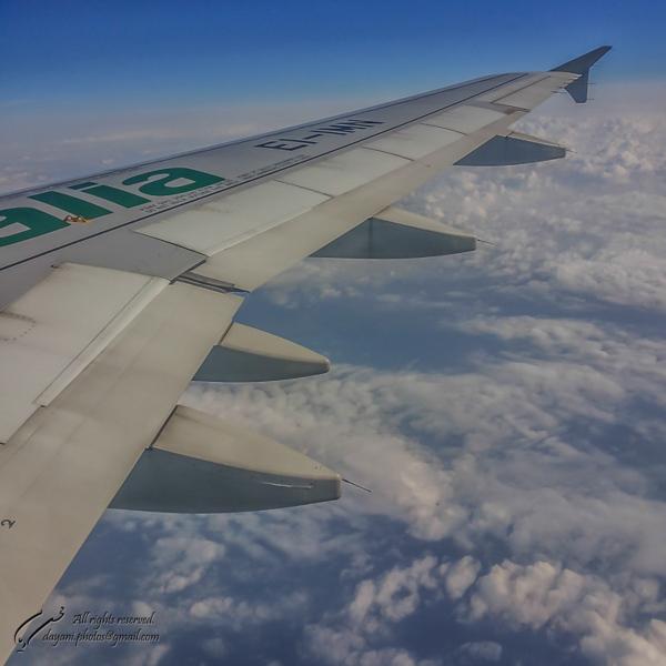 Italian wing.
