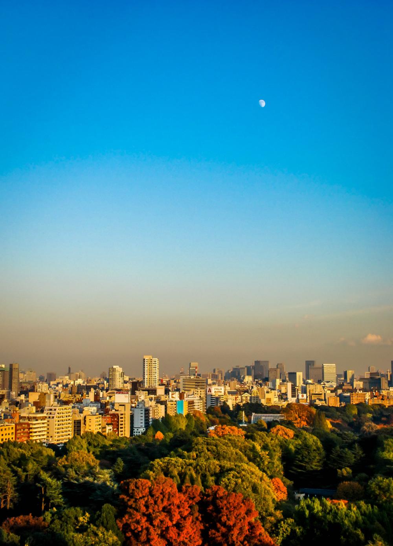 Moon over Tokyo