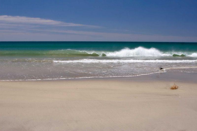 Pukehina Beach New Zealand by BlindPoet