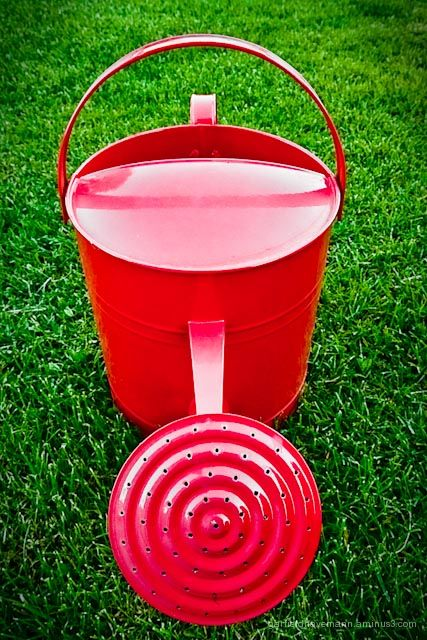 Red watering can on green grass