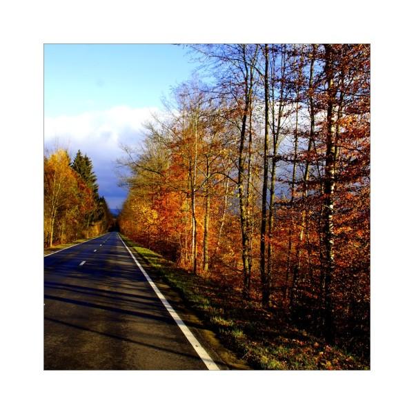En traversant les Ardennes...