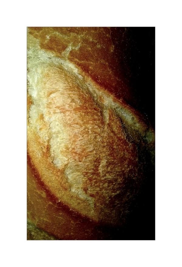 Le pain quotidien...