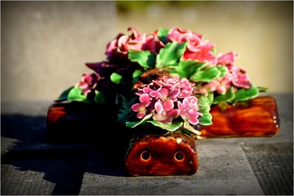 Fleurs éternelles...
