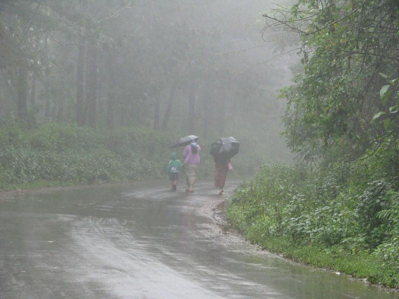 Rainy season essay for class 3