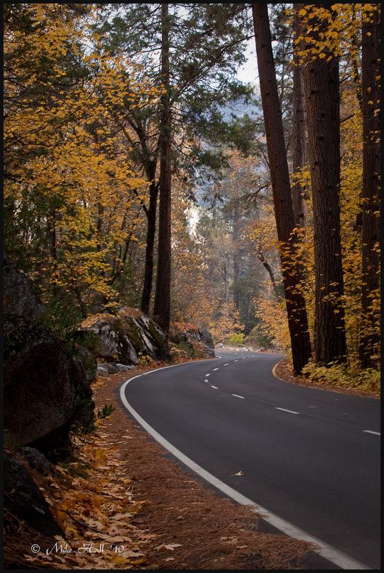 Yosemite Fall Color view