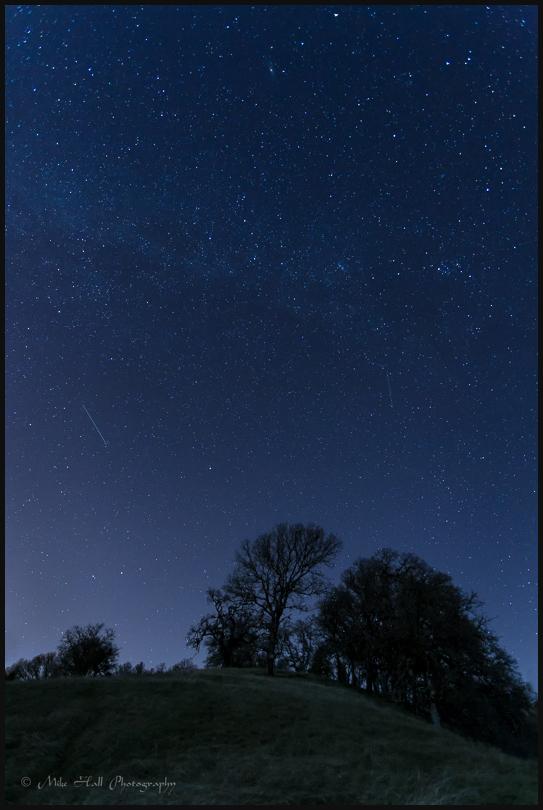Stars above the Oak trees in Santa Clara County