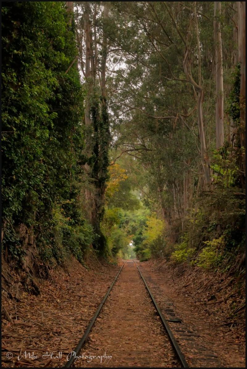 Railroad tracks and fall color