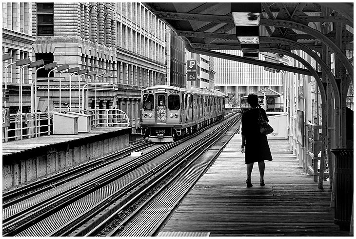 Chicago Transit  People,