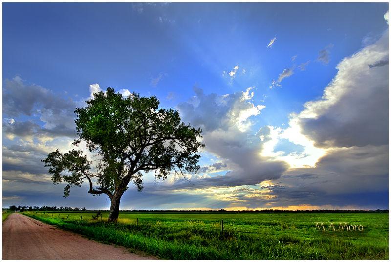 Nebraska Landscapes