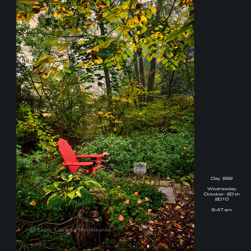 Red chair in the woods