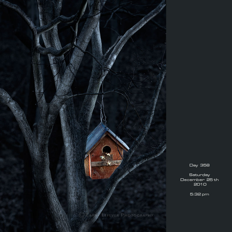 Birdhouse at night