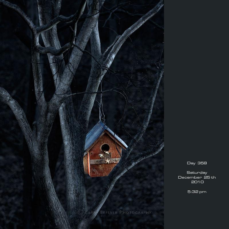 Birdhouse at night
