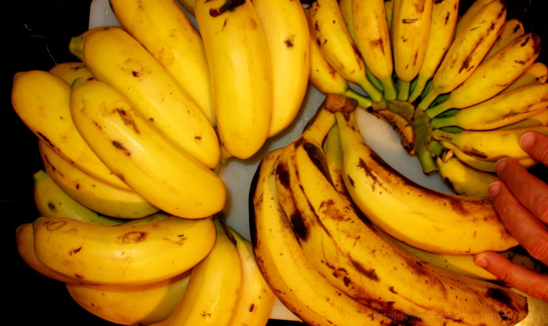 Different kind of bananas