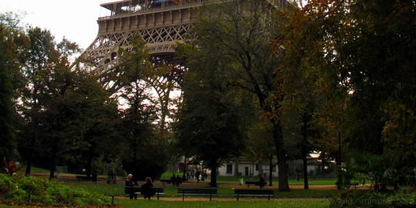 Eiffel Tower between the trees.