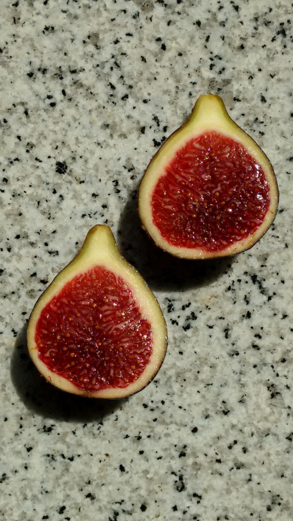 A fig cut in the middle