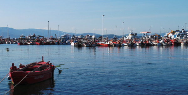 fishing and recreational boats