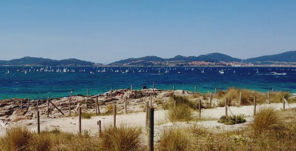 Optimist sailboats in Vigo estuary