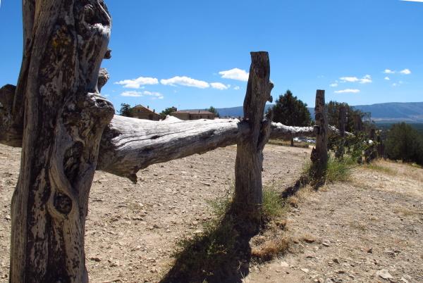 Sticks barrier