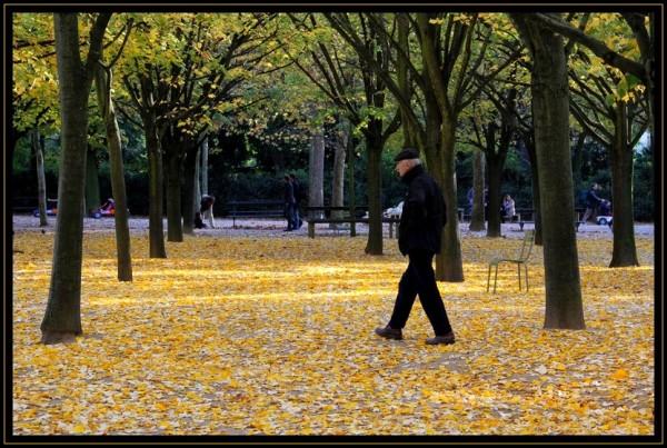 L'automne  la ville  la vie...
